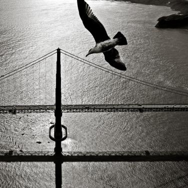 Aerial view of San Francisco Bay Bridge 1002486